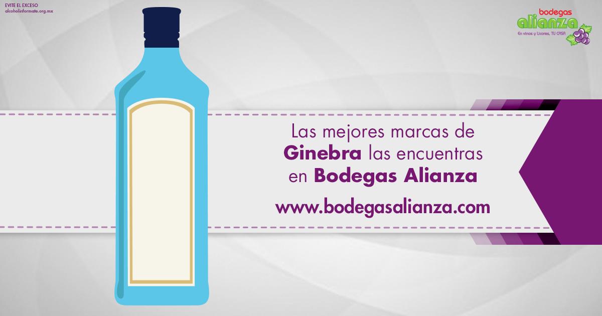 Compra Ginebra Bebida las mejores marcas | Bodegas Alianza